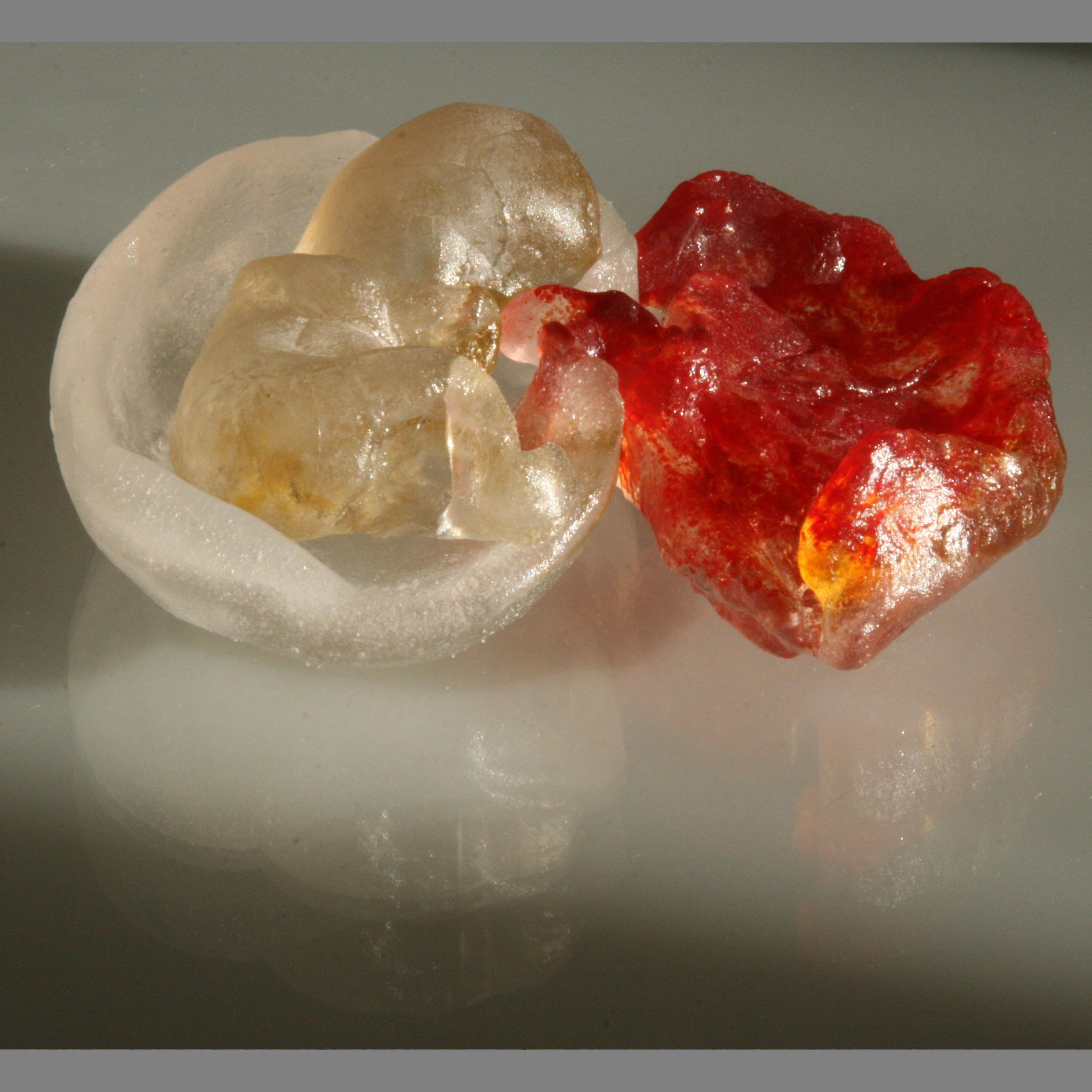 Foetus glass 025asq