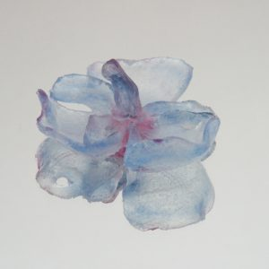 Glass Flowers 9 023a